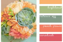 color combos that make me happy / by Pam Hodge