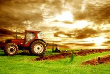 Αγροτική Ανάπτυξη / Δείτε όλα τα διαθέσιμα αγροτικά προγράμματα. Μάθετε πρώτοι πότε θα ξεκινήσει το επόμενο πρόγραμμα!!! Προϋποθέσεις, Δικαιώματα, Υποχρεώσεις. Τι περιλαμβάνει και εάν είναι κατάλληλο για εσάς!!!