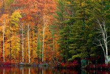 Autumn... My favorite season