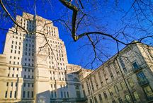 Senate House / by Senate House Library