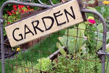 Tips and How-Tos / Garden tips for the smart and savvy gardener.