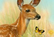 Deers and fawns