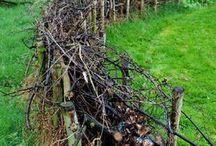 barrière en branches