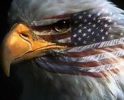 July 4/Patriotic