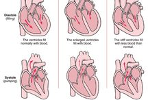 Cardiac / Science of the heart / by Maria Rodriguez