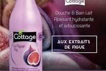 ♥ Figue Cottage / En réalité la figue est une fleur et non un fruit. Riche en fer, manganèse, phosphore, calcium, oligo-éléments, et en vitamines A, B1, PP, C, elle est utilisée en cosmétique pour ses vertus protectrices et adoucissantes.