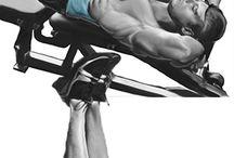 exercicios