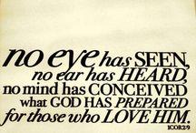 Scripture / by Phyllis Hamner