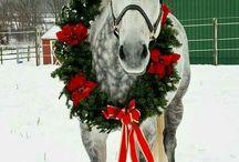 paard kerst sneeuw