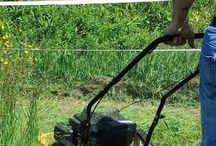 Hay & Pastures