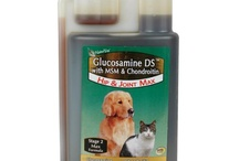 Glucosamine Dogs / Glucosamine DS Liquid with MSM - A BETTER joint formula for dogs suffering from mild joint problems such as stiff joints or pain associated with exercise.