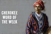 Cherokee History and Language