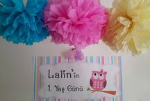My little girl's 1st Birthday Party - Owl Concept / About my little girl LaLiN's 1st Birthday