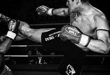 training / kick boxing mma muay thai