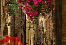Lebanon--- Libano