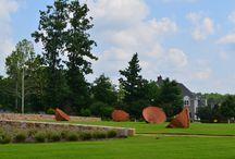 Briar Chapel Neighborhood / by Rhonda Stults, Realtor