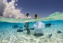 Wedd in sea