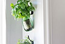 hanging herb jars
