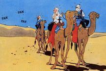Desert bd