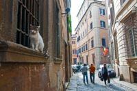 Roma / Roma, Italia