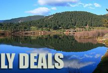Weekly Deals / Big savings! Stock up now for camping season with great weekly deals from Coleman.com.