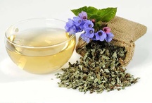 Medicinal Tea / Many have come to realize the benefits that come from buying medicinal tea instead of capsules and tablets. They are readily absorbed by the body and directly into the blood stream without any unnatural interactions like with capsules.  http://theteasupply.com/store/category/medicinal-tea/