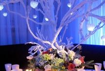 Winter in the Wonderland Wedding