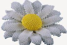 Flower - kwiatek - flowers