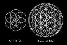 seed of life tattoo
