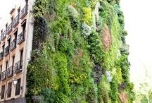 vertical garden&green art