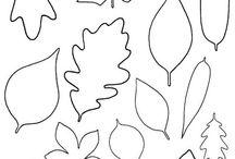 Listy druhy stromov