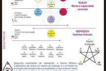 Terapia Holística & Psico / Florais - Hipnose Clínica - Reiki - Radiestesia - Aromaterapia