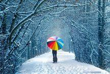 Winter / by Irina Kolisnychenko