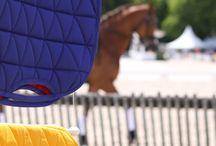 Dressage / Concours d'équitation dressage - Chevaux de dressage - Tapis de selle