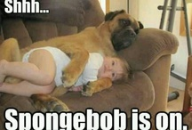 °DOGS AND BABIES°