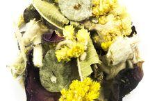 Herbal Teas / Our Wide Selection of Herbal Teas
