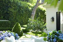Outdoor Living / Garden and Decoration