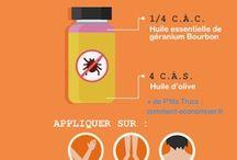 Traitement contre insectes