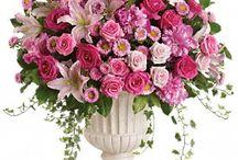vasi fioriti