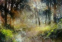 aquarel landscape