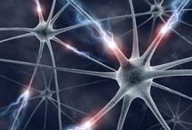 Blog NeuroCreatividad