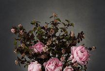 Loewe flowers