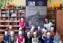 2016 lekcje edukacyjne dla 6 grup dla Przedszkolaków z Przedszkola nr 19 w Rzeszowie / 2 i 3 marca, w sześciu grupach, odbyły się zajęcia edukacyjne dla Przedszkolaków z Przedszkola nr 19 w Rzeszowie.  Na zajęciach dzieci poznały kocie tajemnice, kocie zwyczaje i zachowania. Wspólnie stworzyliśmy mapy szczęśliwego kota i rozmawialiśmy o bezdomności zwierząt, oczywiście w kocich maskach.