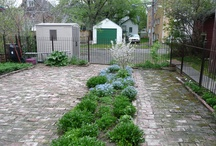 and now the backyard / landscaping of sorts the backyard / by Darlene Juschka
