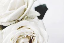 The Whites /  A mix of minimalistisk, design :-) smile and repin the pin you like :-)