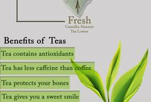 HOW TEA IS MADE [Infographics]