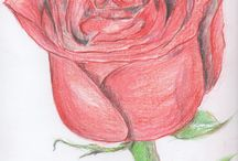 Rajzok (saját rajzaim) / Derwent ceruzarajzaim