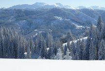 """Urlaub Reisen Camping - Die Ferienregion zwischen Alpsee und Grünten im Allgäu / Die #Natur im #Allgäu in ihren Elementen Zwischen dem markanten Bergmassiv #Grünten, dem """"Wächter des Allgäus"""", dem Großen #Alpsee - dem größten #Natursee im Allgäu"""" bei #Immenstadt, liegt die reizvolle Ferienregion Alpsee - Grünten 4-Sterne Alpsee Wellness Camping in Mitten der Oberallgäuer Bergwelt Mittige Lage zu #Oberstaufen - #Isny / #Wangen - #Kempten - #Oberstdorf beliebte Tagesausflüge: #Füssen - #Tannheimer Tal - #Hindelang - #Kleinwalsertal - #Bodenseeraum https://alpsee-camping.de"""