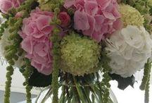 Adornos florales / Decoración