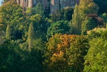 Duster Castle and Village, Somerset / Lovely Medieval Village, Castle and Tea Rooms